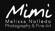 Melissa Nolledo Photography and Fine Art